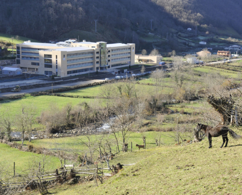 Vista de la Residencia Spa de Felechosa con caballos en los prados