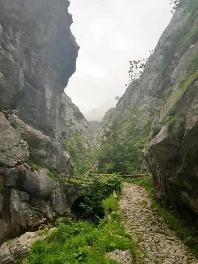 Ruta Foces de El Pino (concejo de Aller)