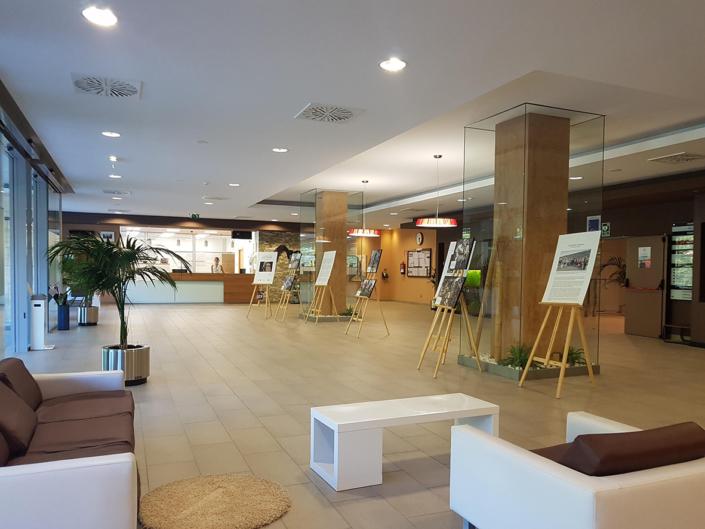 Hall de recepción de la Residencia Spa de Felechosa con exposición