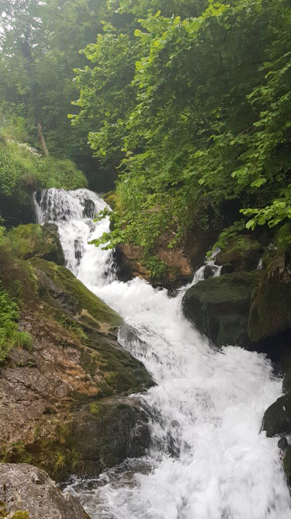 Río Foces de El Pino (concejo de Aller)